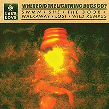 Where Did the Lightning Bugs Go?