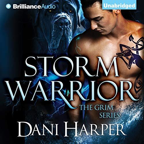 Storm Warrior Titelbild