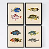 Set de 4 láminas de peces coloridos efecto vintage. Composicion de 8 peces diferentes en tamaño...