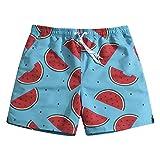 SULANG Ultra rápido Pantalones Cortos Frutas de Verano seco de los Hombres Large / 34-35 Inches Watermelon