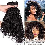 Afro Kinky Curly Bundles Synthetic Wavy Hair Extensions Color Dark Brown Heat Resistand Fiber Weaving 3 Pieces Hair Weave Bundles(16' 18' 20' 4#)