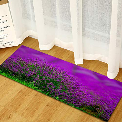 DREAMING-Lavender Absorbent Non-Slip Entry Mat Kitchen Strip Mats Living Room Bedroom Carpet 60 * 90cm