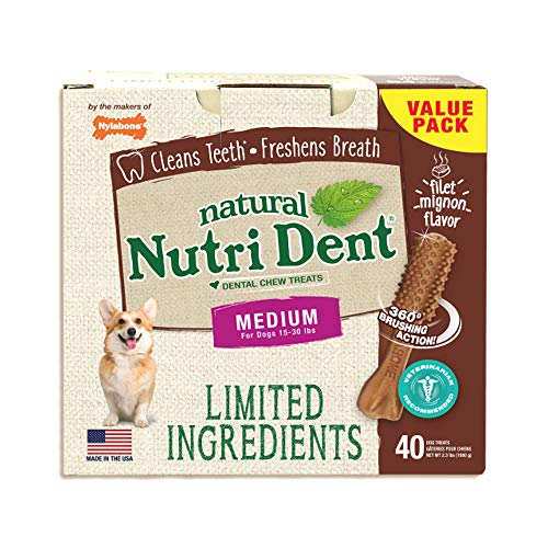 Nylabone NutriDent Natural Dental Chew Treats Filet Mignon, Medium, 40 Count