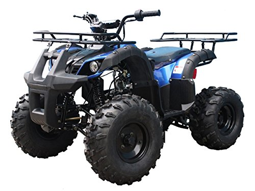 TaoTao ATV TForce 110cc Big Rugged Wheels (Blue)