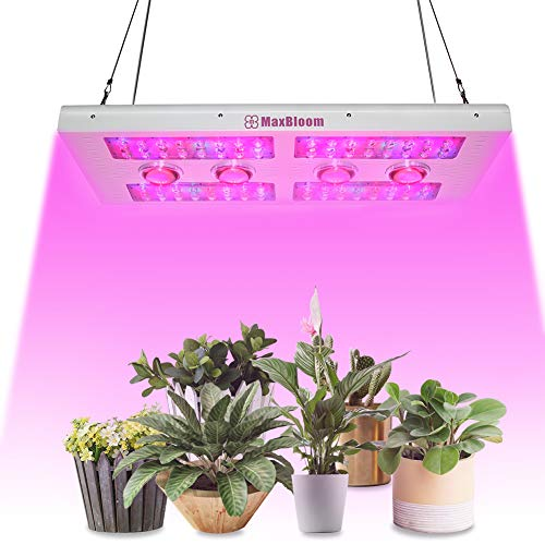 MaxBloom 800W Dimmable COB LED Grow Light 12-Band Full Spectrum Plant Growing Lamps with Veg/Bloom Dimmer, UV&IR for Greenhouse Hydroponic Indoor Planting-Professional Edition (COB 800 Watts)