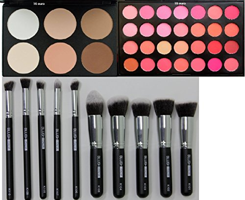 Blush Italie Make Up Set Visage Teint Correcteurs Blush instructifs Ciprie terre Lot de 10 pinceaux Kabuki
