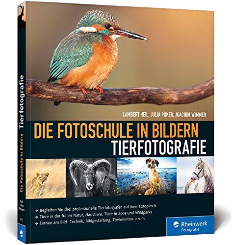 Die Fotoschule in Bildern. Tierfotografie: Expertenwissen zu faszinierenden Tieraufnahmen