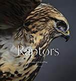 Image of Raptors: Portraits of Birds of Prey (Bird Photography Book)