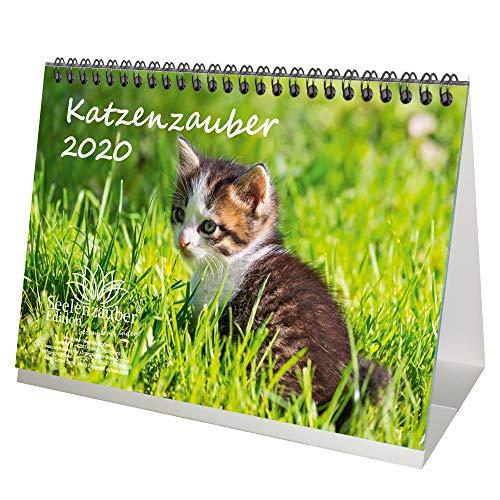 Katzenzauber DIN A5 Tischkalender 2020 Katzen und Katzenbabys - Seelenzauber