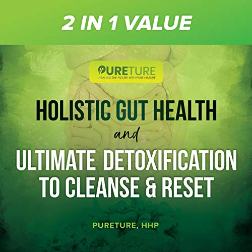 2 in 1 Value Holistic Gut Health and Ultimate Detoxification to Cleanse & Reset cover art