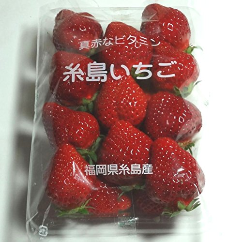 いちご(ゆうべに、とよのか、さがほのか、紅ほっぺ他)1パック。福岡産 熊本産