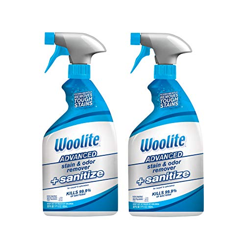Woolite Advanced Stain & Odor Remover + Sanitize, 12829