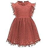 Csbks Toddler Girls Cute Pompoms Lace Floral Elegant Retro Swing Party Dress Reddish-Brown 110