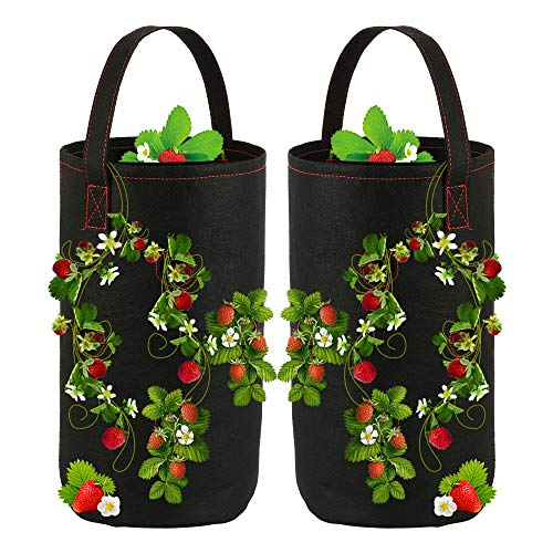 2Pcs Breathable Hanging Strawberry Grow Bags Non-woven Fabric Reinforce Handle Strawberry Growing Bag with Handles for Garden Strawberries, Herbs, Flowers