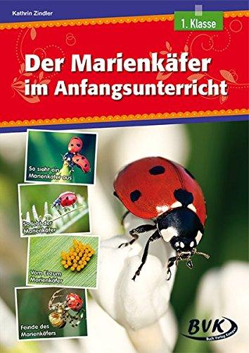 Der Marienkäfer im Anfangsunterricht