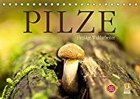 Pilze - fleissige Waldarbeiter (Tischkalender 2022 DIN A5 quer): Sie heissen Satan, Schweinsohr, Fliegen oder Knollenblaetter: Pilze. (Monatskalender, 14 Seiten )