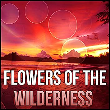 Flowers of the Wilderness - Ultimate Massage Relaxation, Music for Meditation, Relaxation, Massage Therapy