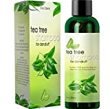 Dandruff Shampoo with Tea Tree Oil for Men and Women – All Natural No Sulfate Anti-dandruff Formula with Organic Essential Oils – 100% and USA Made By Honeydew Products