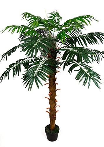 Seidenblumen Roß Phönixpalme 140cm ZJ künstliche Pflanzen Palmen Palme Kunstpalmen Kunstpflanzen Dekopalme