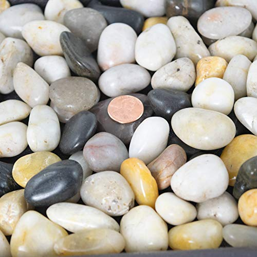 3 Lbs Large Decorative Pebbles for Bonsai Tree Humidity Tray and Fairy Garden