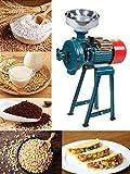 BEAMNOVA 2200W Wet Grinder Grain Mill Molino de Maiz Electric Food Grinder for Corn Flour Rice Nut,...