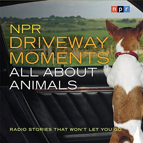 NPR Driveway Moments: All About Animals audiobook cover art