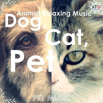 Dog, Cat, Pet Animal Relaxing Music