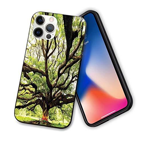 Compatible con la serie 2020 iPhone 12 The Largest Monkey Pod Tree en Tailandia Eastern Green Big Branches Growth Eco Photo for IP12Pro Max de 6,7 pulgadas.