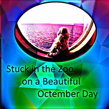 Stuck in the Zoo on a Beautiful Octember Day