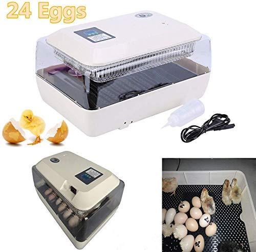 Brutmaschine 24 Eier Brutapparat Vollautomatische Brutmaschine, Motorbrüter Hühner, Brutapparat mit Eierablage Digitale Temperatur-Luftfeuchtigkeitskontrolle Hohe Qualität
