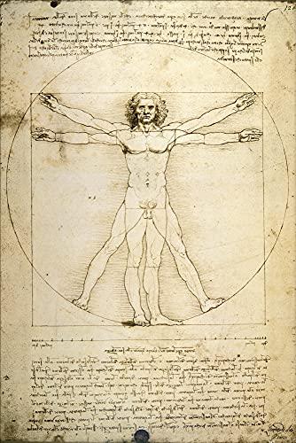1art1 Leonardo da Vinci - l'Uomo Vitruviano VI Poster Stampa (91 x 61cm)
