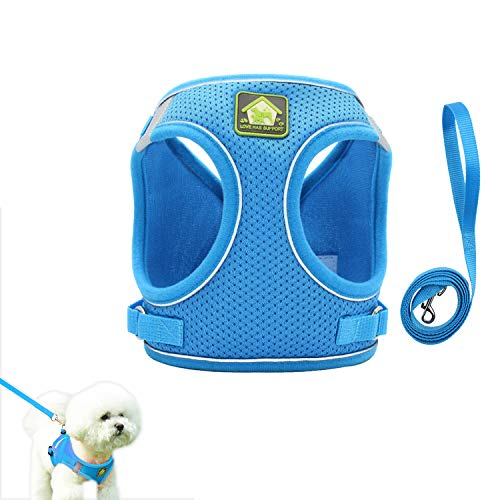 Dgndct Dog Harness and Leash Set - No Pull Soft Air Mesh Dog Harness with Padded Vest, Reflective Adjustable Puppy Vest for Small , Medium Dogs and Cats.(XS-Blue)
