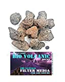 BIO VOLCANIC 500 g – Filtro biológico natural para acuario y decoración de roca de lava para tanque de peces purificadora de agua