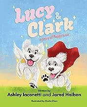 lucy clark book