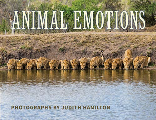 Animal Emotions