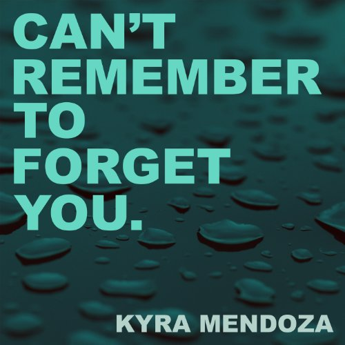 Can't Remember to Forget You (Karaoke Instrumental Extended Originally Performed by Shakira)