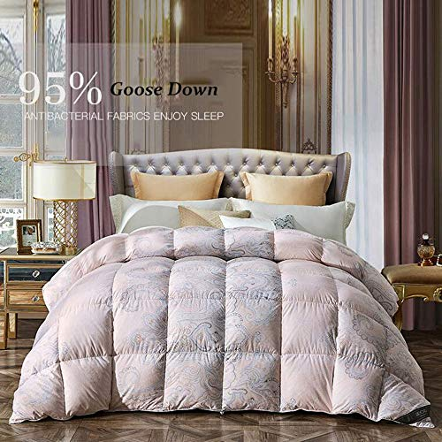 ZXDFG Goose Down Duvet - 150210Cm/200230Cm King Size Spring and Autumn is Thickened by Duck Down Warm Single Double Quilt Bedding Bedroom Home Decoration,C-220cmx240cm