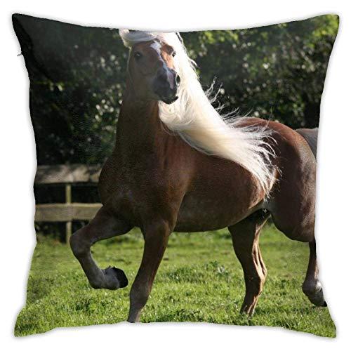Federe Cuscini Divano Moderna Copricuscini,Paddock Horse White Mane,Fodera per Cuscino Decorative per Divano Sedia Letto,45×45cm