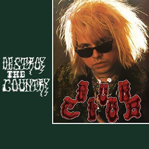 Destroy The Country [Vinilo]
