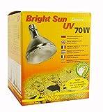 [page_title]-Lucky Reptile BSD-70 Bright Sun UV Desert, 70 W, Metalldampflampe für E27 Fassung mit UVA und UVB Strahlung (Vorschaltgerät erforderlich)
