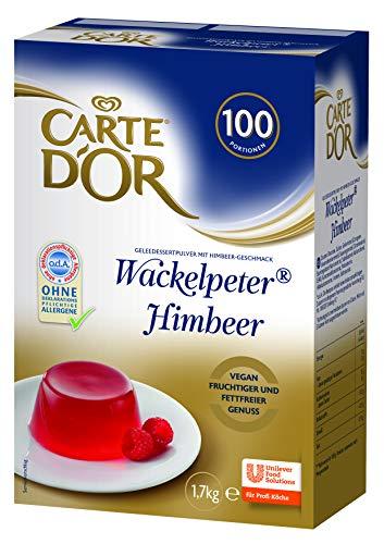 Carte D'Or Wackelpeter Himbeer (Geleedessertpulver) 1er Pack (1 x 1,7 kg)