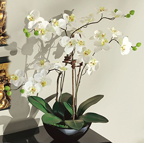 Pureday Planta Artificial Orquídea Blanca – con Maceta de cerámica Negra – Altura Aprox. 70 cm