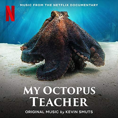 My Octopus Teacher End Credits