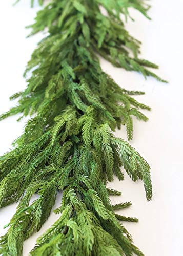 Afloral Real Touch Norfolk Pine Garland - 60'