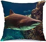 Funda de Cojine Throw CojínSubmarino Natural Natación Acuario Terror Animales enormes Arrecife Fauna blanca Naturaleza Tropical Fundas para almohada 45X45CM