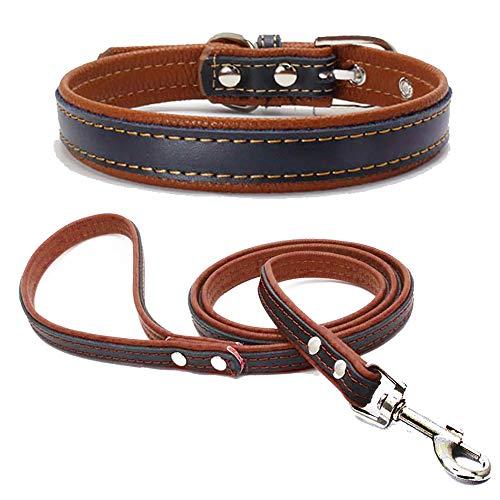 TFENG Hundehalsband, Verstellbarer Lederhalsband Basic Bling Halsbänder mit Leinefür Katzen und Hunde(Braun,XXS)