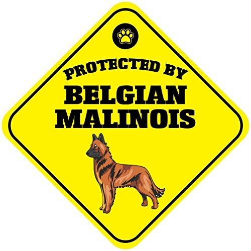 Monsety Metallschild für Zaun und Garage, mit Aufschrift Yard Zaun, geschützt durch belgische Malinois