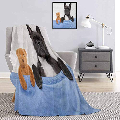 SUZM Animal Fluffy Plush Soft Comfortable Warm blanketFrench-Bulldog-Sleeping-with-Teddy-Bear-in-Cozy-Bed-Best-Friends-Fun-Dreams-Image Luxury air-Conditioning Duvet Cover W70 x L84 Inch Multicolor