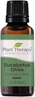 Plant Therapy Eucalyptus Dives Essential Oil 30 mL (1 oz) 100% Pure, Undiluted, Therapeutic Grade