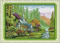刺繡スターターキット刻印クロスステッチキット初心者DIY11CT刺繡のための野生の家族簡単な面白いプレプリントパターン16x20インチ